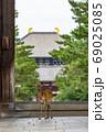 東大寺南大門と鹿 69025085