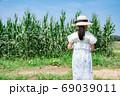 トウモロコシの収穫をする小学生 69039011