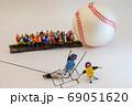 野球のキャッチャーと審判の意見の不一致 69051620