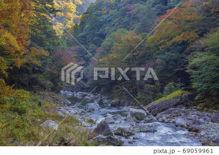 国の特別名勝三段峡の秋景色 紅葉に映える川 69059961