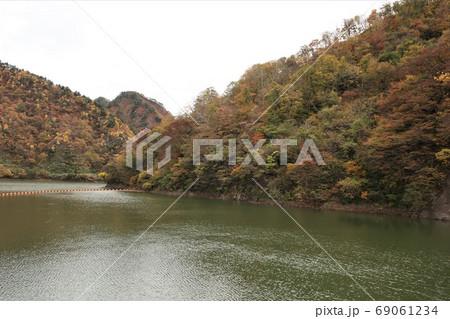 新潟県 五泉市 早出川ダムの紅葉 69061234