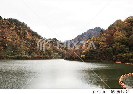 新潟県 五泉市 早出川ダムの紅葉 69061236