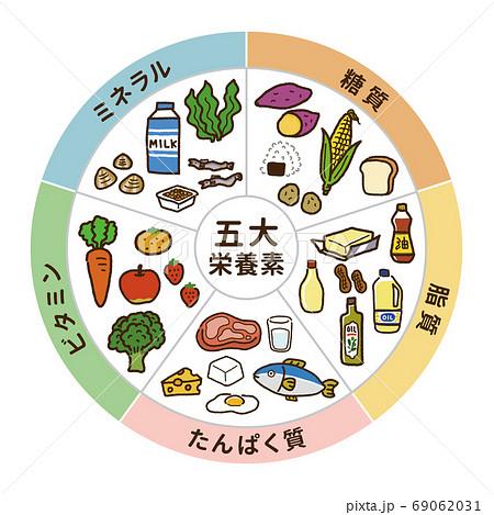 五大栄養素の表イラスト(円型)A 69062031