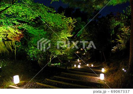 【京都】高台寺の秋の夜間特別拝観 ライトアップされた境内 69067337