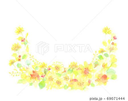 水彩で描いた黄色の花の背景 69071444