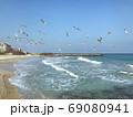 A Flock Of Seabirds Fly Over The Blue Sea 69080941