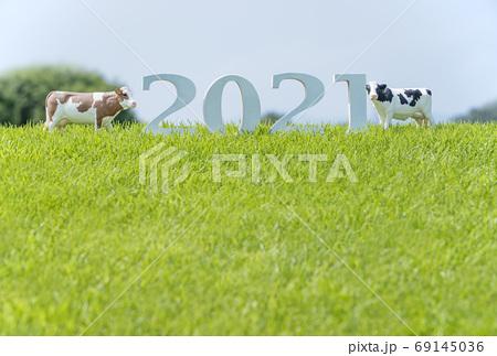 2021年賀状素材 牛と草原 丑年ポストカード  牧場風景 イメージ素材   69145036