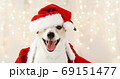 Cute dog in costume for Christmas celebration 69151477