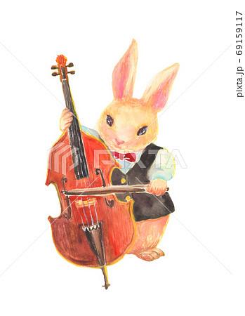 水彩で描いたコントラバスを弾くウサギのイラスト 69159117