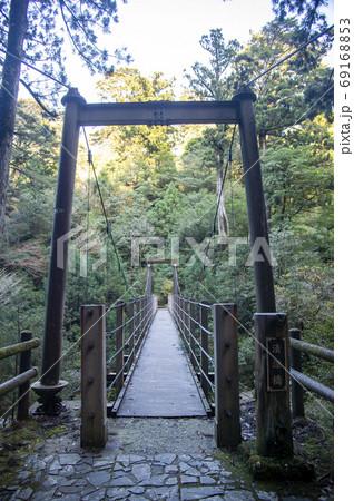 鹿児島県 屋久島のヤクスギランドの渓流に架かる吊り橋 69168853