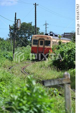 夏草をかき分けるように走る小湊鉄道の列車 69187767