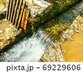 夏の水路 69229606