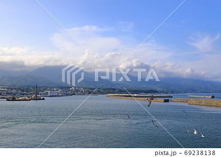 フェリーから見た佐渡ヶ島とウミネコ 69238138