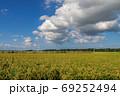 積雲が浮く田園風景【秋のはじまり】 69252494