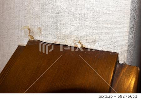壁紙のヒビ(キズ) 69276653