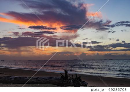 砂浜に打ち上げられた流木と朝焼けの空 69286703