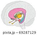 大脳辺縁系 名称なし 視床の追加 69287129