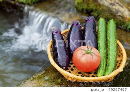 水場で獲れたて新鮮トマト・ナス・胡瓜 69297497