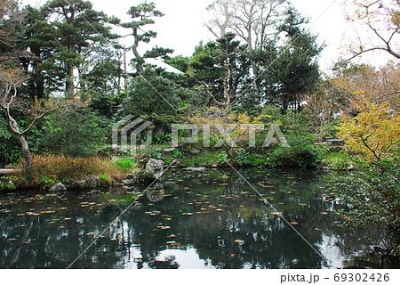 清水家住宅の回遊式庭園(静岡県掛川市) 69302426