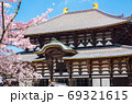 東大寺 大仏殿 金堂 桜 春 (奈良県奈良市) 2020年4月 69321615