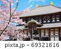 東大寺 大仏殿 金堂 桜 春 (奈良県奈良市) 2020年4月 69321616