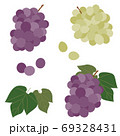 ブドウの実と葉のセット 69328431