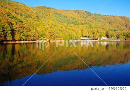紅葉の四尾連湖(山梨県市川三郷町) 69342392