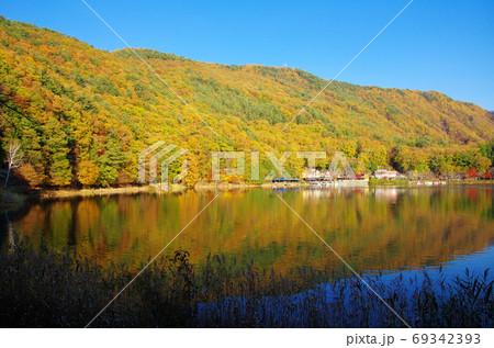 紅葉の四尾連湖(山梨県市川三郷町) 69342393