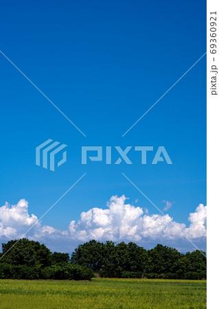 真夏の水田地帯と入道雲と青空のコピースペース 69360921