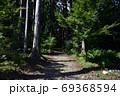 天宮神社境内の背の高い木々と森の入口 69368594