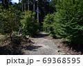 天宮神社境内の背の高い木々と森の入口 69368595