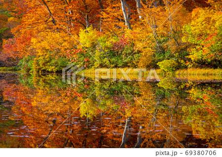 鳥海山のふもとの善神沼の紅葉と水鏡 69380706