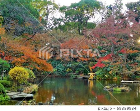 鮮やかな紅葉が美しい日本庭園 69389934