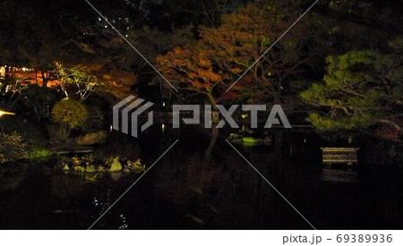夜の闇に浮かび上がる紅葉と松、静けさを感じる美しい夜景 69389936
