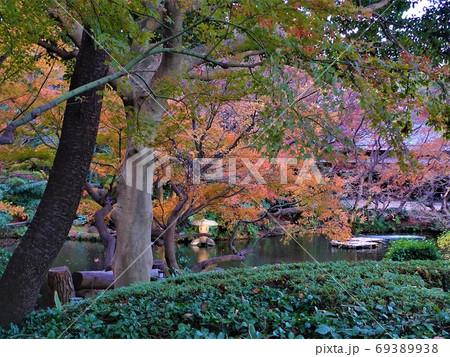 池と小さな石燈籠のある紅葉の日本庭園 69389938