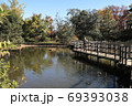 紅葉の洗足池 東京都大田区 69393038
