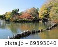 紅葉の洗足池 東京都大田区 69393040