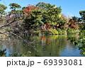紅葉の洗足池 東京都大田区 69393081