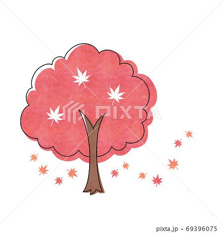 赤色のモミジの木 69396075