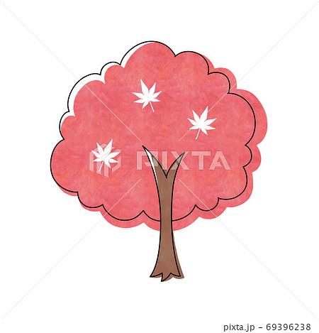 赤色のモミジの木 69396238