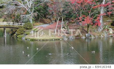池の上で鴨が数羽泳ぎ、橋が架かっている小島では紅葉が楽しめる市民の憩いの場の秋の風景 69416348