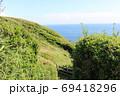 神奈川県三浦半島の南端にある城ヶ島公園の緑の木々と遊歩道 69418296