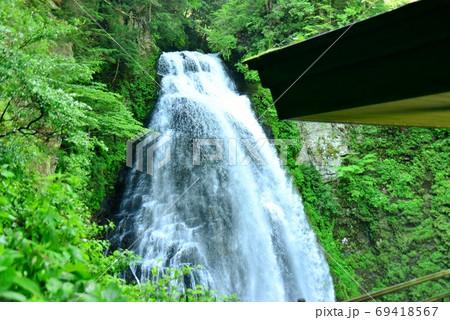 緑の木々の間を流れ落ちる番所大滝 69418567