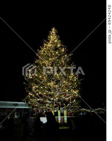 漆黒の夜に金色に煌めくクリスマスツリー、横浜みなとみらい 69424248