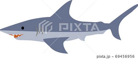 かわいくてシンプルなサメのイラスト 69456956