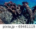 小笠原 父島の座礁船 濱江丸 69461119