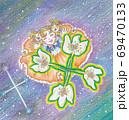 南十字星とサザンクロスの花と女の子 69470133