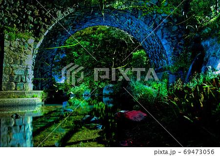 夏の夜を飛び回るホタル(福岡県北九州市) 69473056