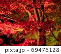 原不動滝公園の紅葉・ライトアップ(兵庫県) 69476128
