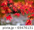 原不動滝公園の紅葉(兵庫県) 69476131